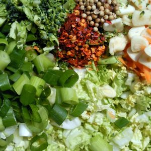 Kimchi groenten